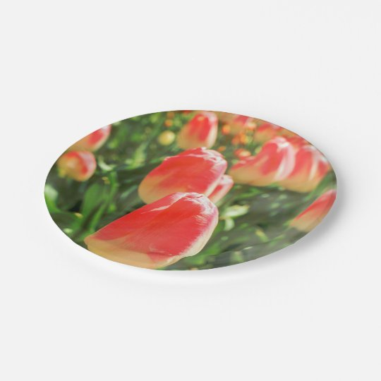 Tulip Heaven Paper Plate