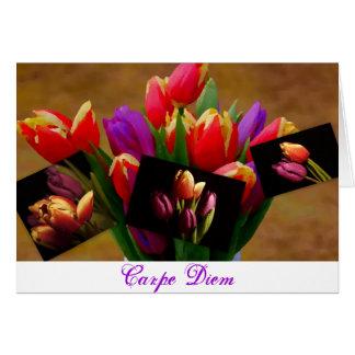 Tulip Love-Carpe Diem Card