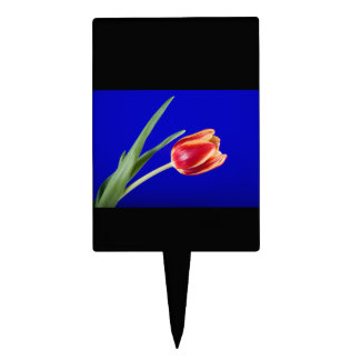 Tulip on blue background cake picks