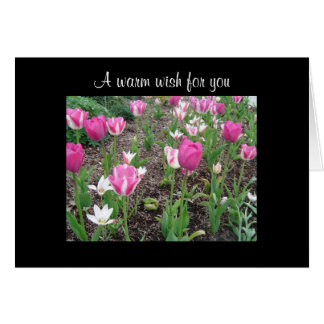 Tulip patch birthday wish card