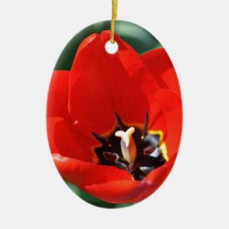 Tulip Perception Ceramic Oval Decoration