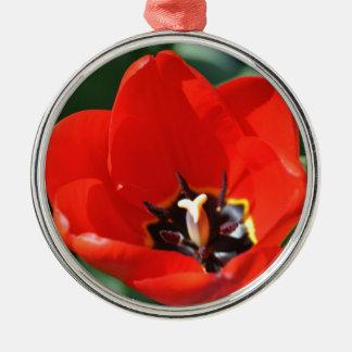 Tulip Perception Silver-Colored Round Decoration