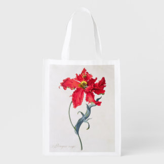 Tulip: Perroquet Rouge Reusable Grocery Bag
