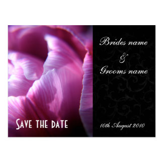 Tulip petals Save the date postcards