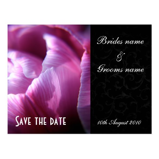 Tulip petals Save the date postcards