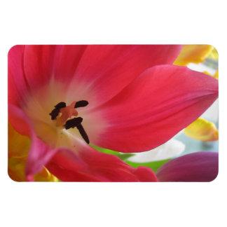 Tulip Rectangular Photo Magnet