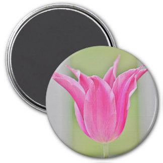 Tulip refrigerator magnet