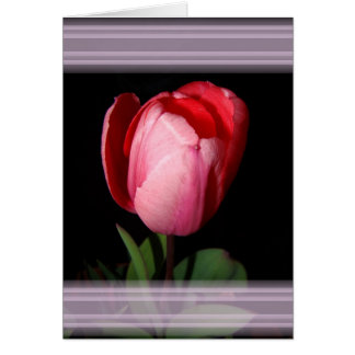 Tulip Ribbons Card