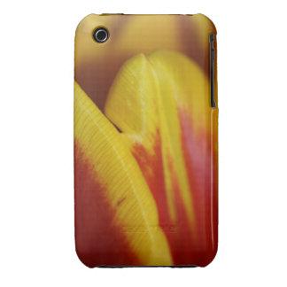 Tulip Skin iPhone 3 Cases