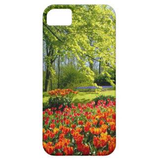 Tulip time, gardens at Keukenhof iPhone 5 Case