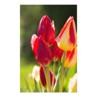 Tulip Tiptoe Time Stationery Design
