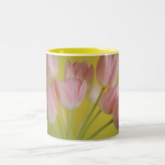 Tulip Two-Tone Coffee Mug
