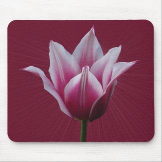 Tulip w/sunburst ~ mousepad