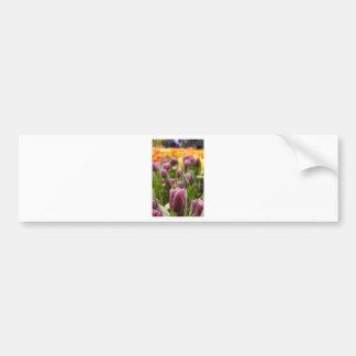 Tulip Zoom Bumper Sticker