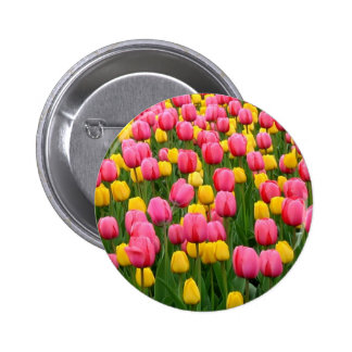 Tulips 1 Button