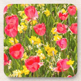 Tulips and Daffodils Coaster
