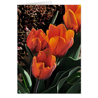 Tulips and Hens Card