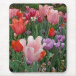 Tulips and Pansies 2 Mouse Pad