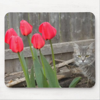 Tulips and the Kitten Mouse Pad