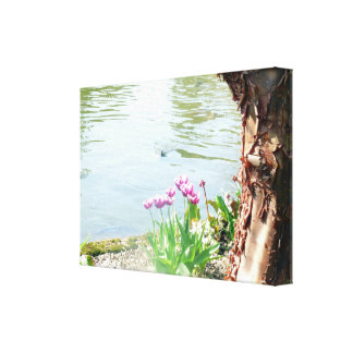 Tulips and Tree Bark By Lake Canvas Print