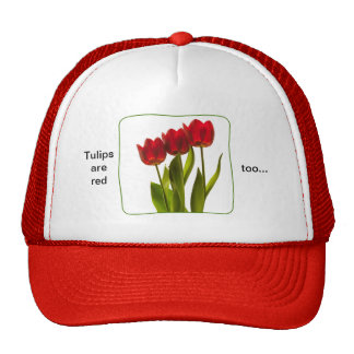 """""""Tulips are red too..."""" - Photograph of Three Red Hat"""