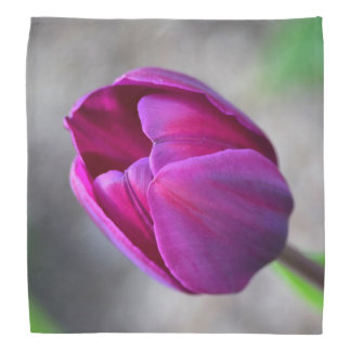 Tulips Bandana