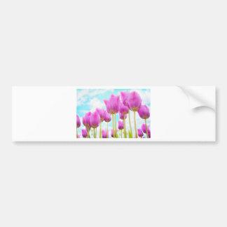 tulips bumper sticker