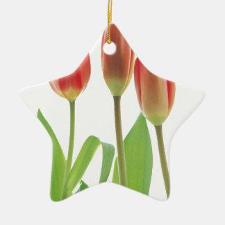tulips ceramic star decoration