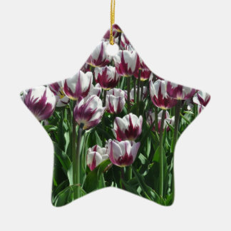 Tulips Ornaments