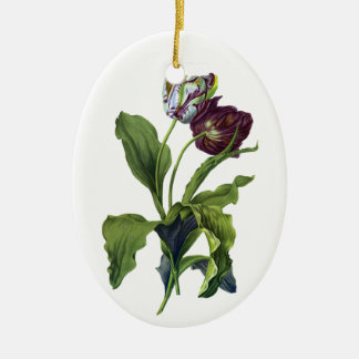 Tulips Drawn From Nature by Gerard van Spaendonck Ceramic Oval Decoration