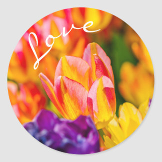 Tulips Enchanting Classic Round Sticker