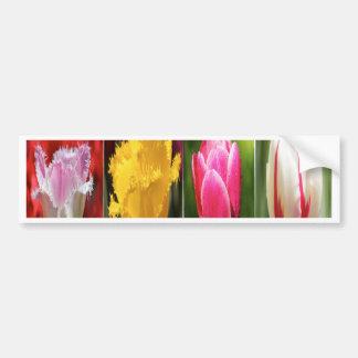 Tulips Flowers Bumper Sticker