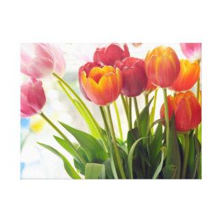 Tulips for Spring Season Canvas Print