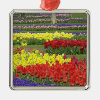 Tulips, Grape Hyacinth, and Daffodils, 2 Silver-Colored Square Decoration