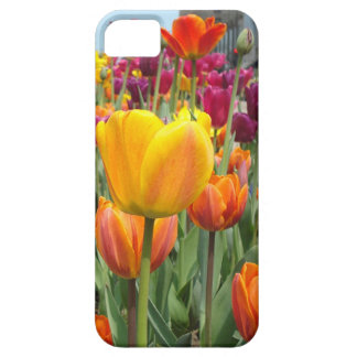 Tulips In The Breeze iPhone Case