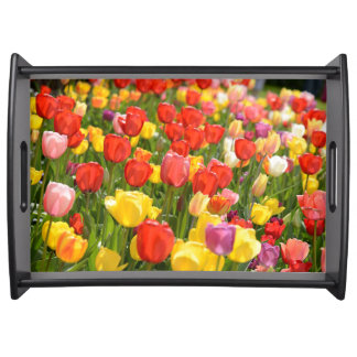 Tulips in the Garden Serving Tray