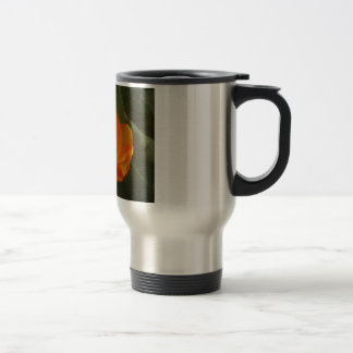 Tulips In The Sun Travel Mug