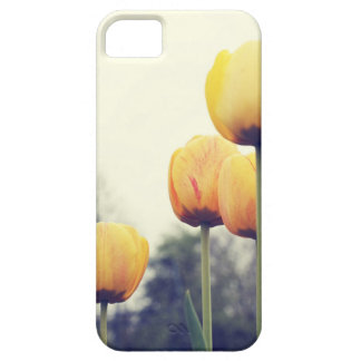 tulips iPhone 5 cover