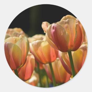 Tulips Sticker   Sticker Tulpen