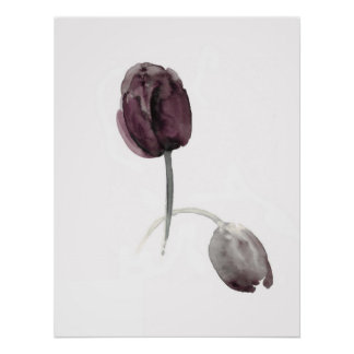 Tulips white poster purple flowers