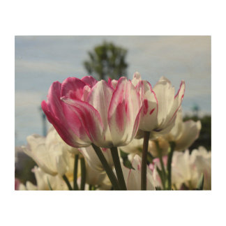 Tulips Wood Wall Art