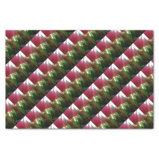TULIPS WRAPPING PAPER/GIFT BAGS/LABELS TISSUE PAPER