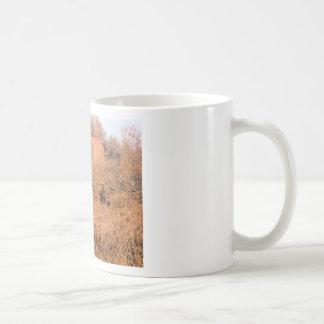 Tundra Shack in Ak Coffee Mug