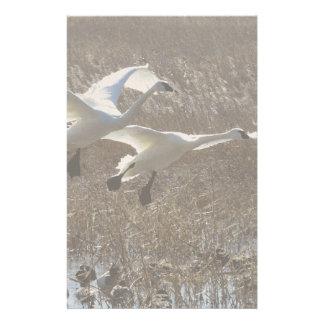 Tundra Swan Birds Wildlife Animals Customized Stationery