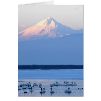 Tundra Swans and Mount Shasta Card