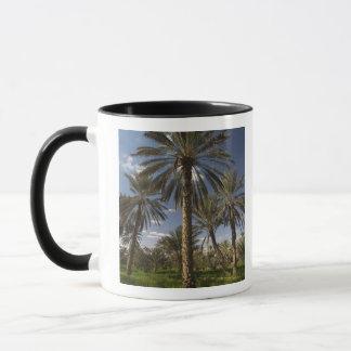 Tunisia, Ksour Area, Ksar Ghilane, date palm 2 Mug