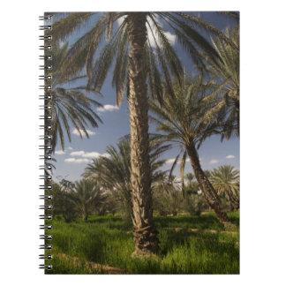 Tunisia, Ksour Area, Ksar Ghilane, date palm Spiral Note Book