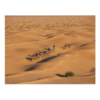 Tunisia, Ksour Area, Ksar Ghilane, Grand Erg 4 Postcard