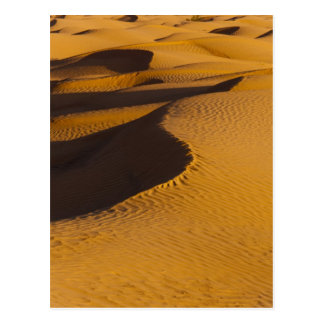 Tunisia, Ksour Area, Ksar Ghilane, Grand Erg Postcard