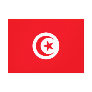 Tunisia National World Flag Canvas Print